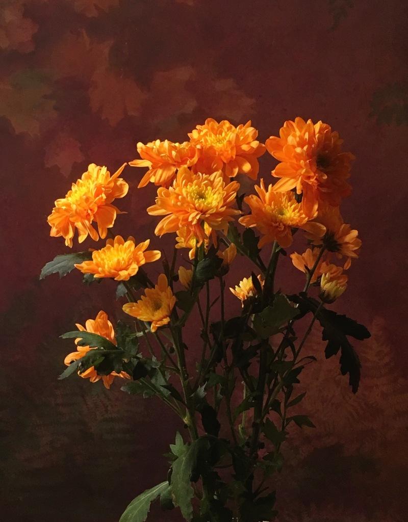 Bakgrund oranga blommor